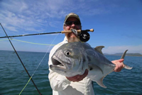 Fly Fishing Zihuatanejo